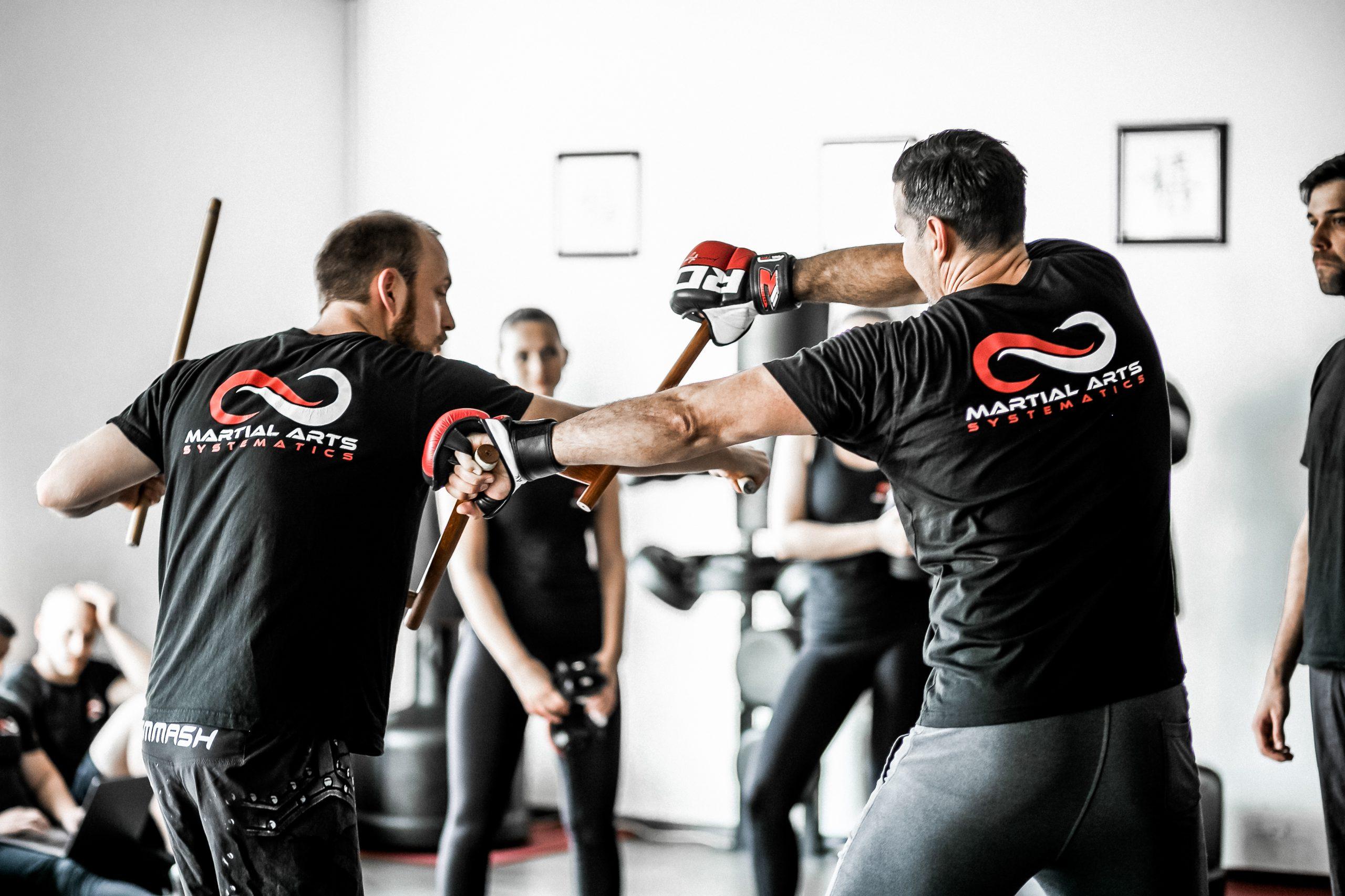Kampfkunst Waffentraining