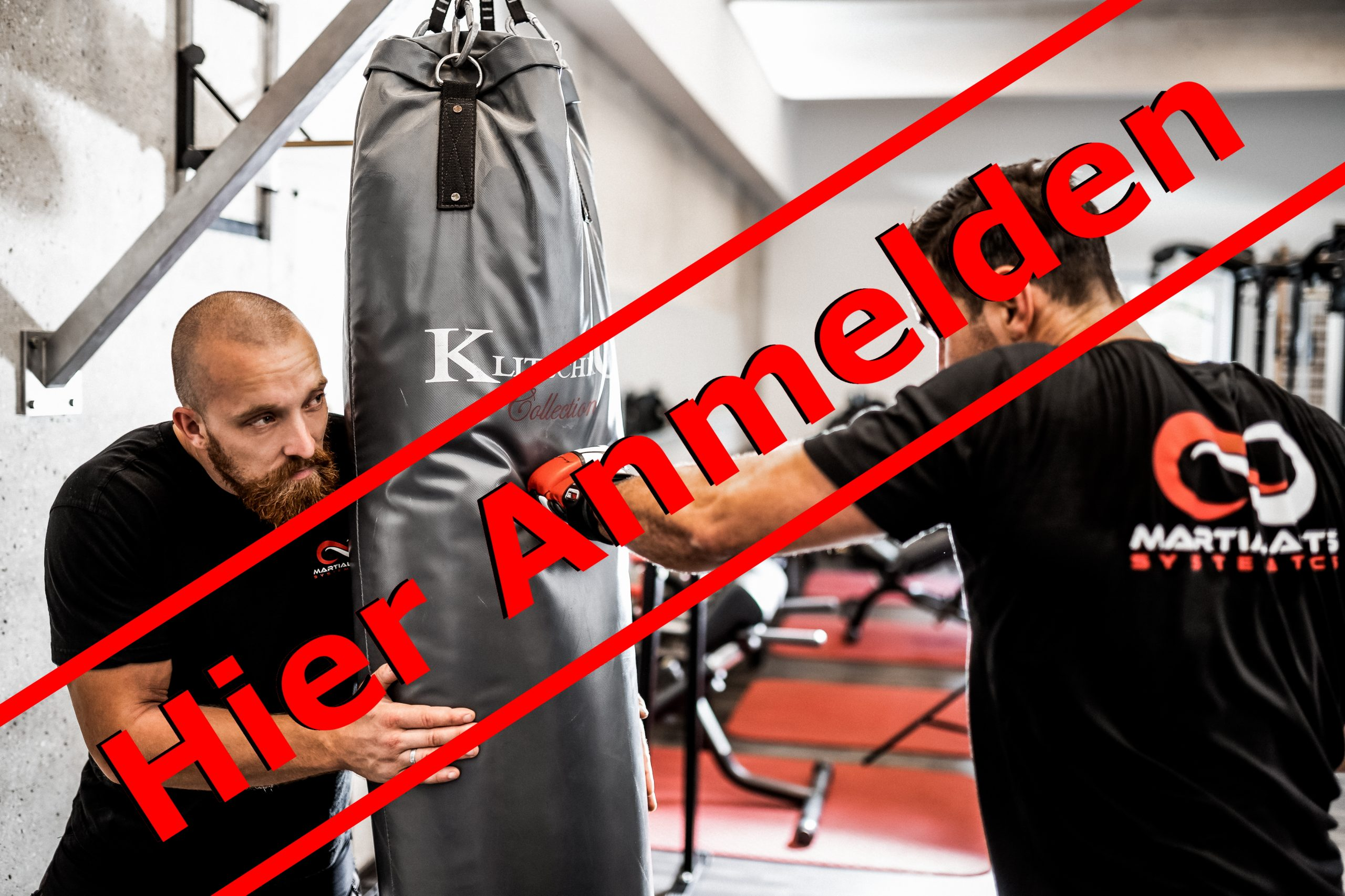 Martial Arts Systematics Anmeldung Probetraining